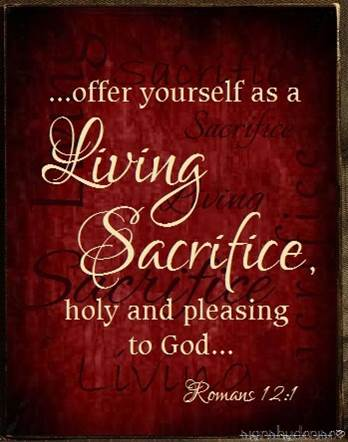word sacrifice Sacrifice: the act of offering something to a deity in propitiation or homage, especially the ritual slaughter of an animal or a person.